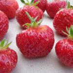 fraise Favette