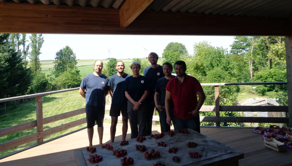 L'équipe de testeurs de fraises