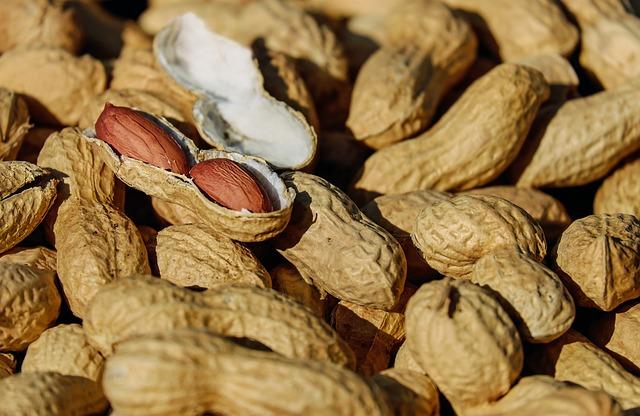 cacahuètes en cosses