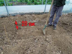 création d'une fosse de 20 cm