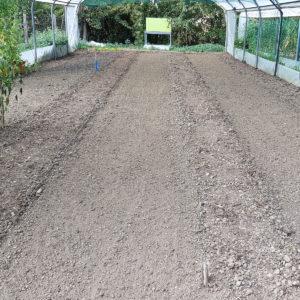 faux semis - préparation terre